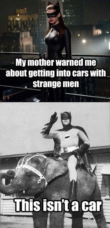 funny sex picture batman and catwoman